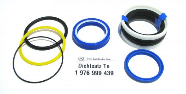 Dichtsatz passend für TEREX 1976999439