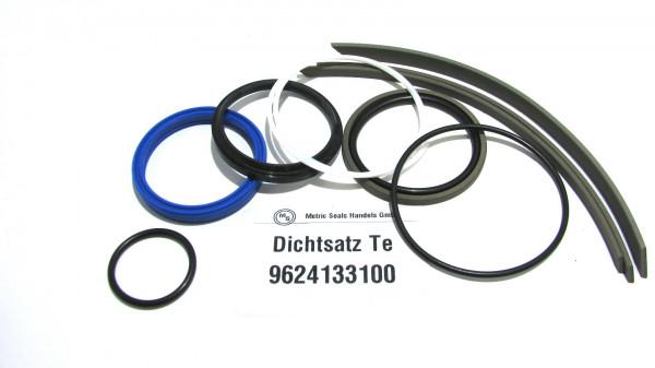 Dichtsatz passend für TEREX 9624133100