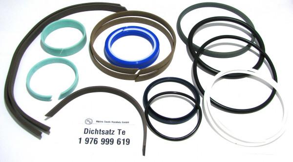 Dichtsatz passend für TEREX 1976999619