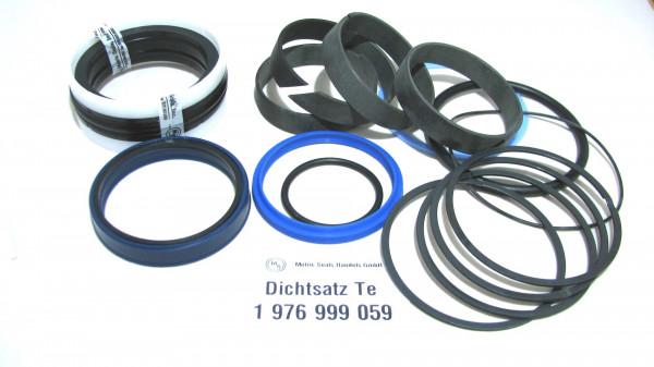 Dichtsatz passend für TEREX 1976999059