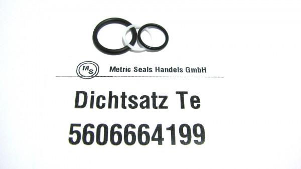Dichtsatz passend für TEREX 5606664199