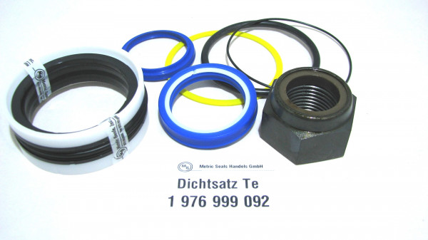 Dichtsatz passend für TEREX 1976999092