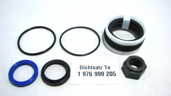 Dichtsatz passend für TEREX 1976999205