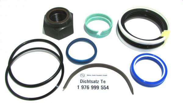 Dichtsatz passend für TEREX 1976999554