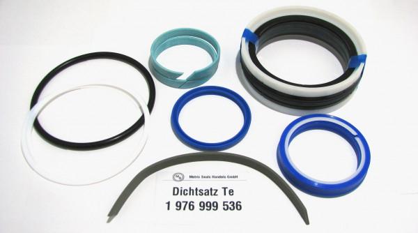 Dichtsatz passend für TEREX 1976999536
