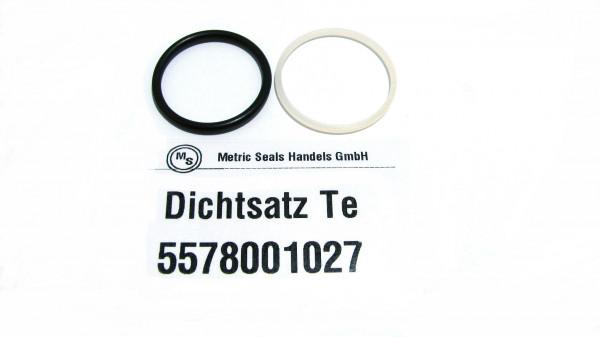 Dichtsatz passend für TEREX 5578001027