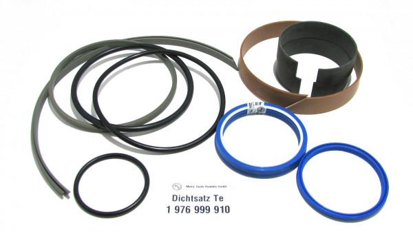 Dichtsatz passend für TEREX 1976999910