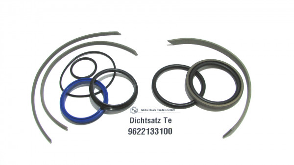 Dichtsatz passend für TEREX 9622133100