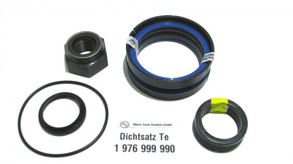 Dichtsatz passend für TEREX 1976999990