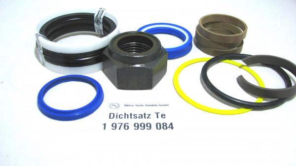 Dichtsatz passend für TEREX 1976999084
