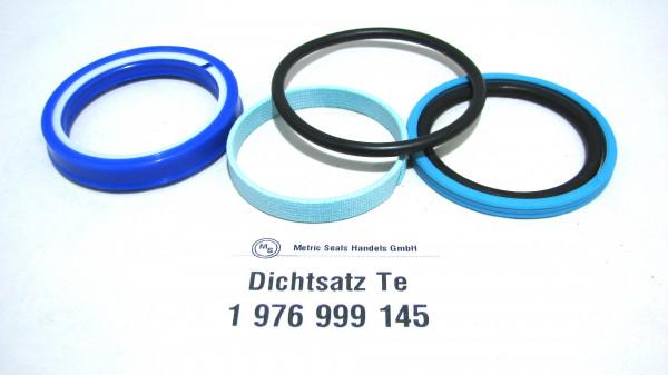 Dichtsatz passend für TEREX 1976999145