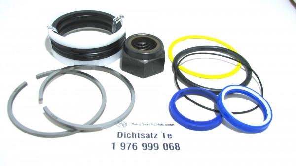 Dichtsatz passend für TEREX 1976999068