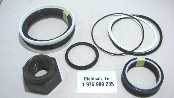 Dichtsatz passend für TEREX 1976999235