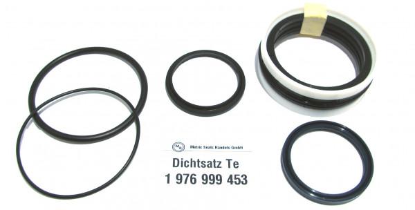 Dichtsatz passend für TEREX 1976999453