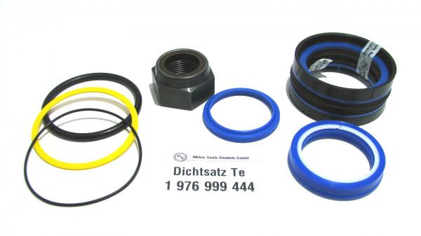 Dichtsatz passend für TEREX 1976999444