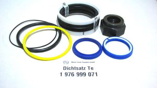 Dichtsatz passend für TEREX 1976999071