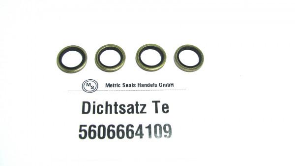 Dichtsatz passend für TEREX 5606664109