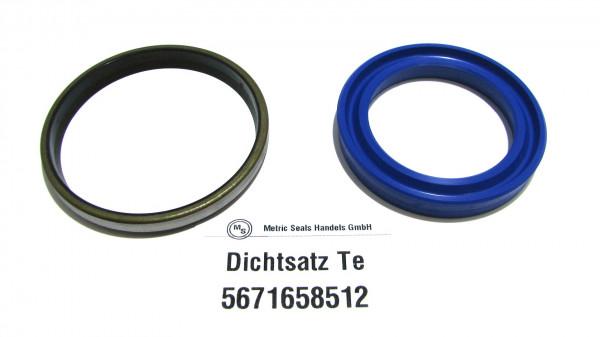 Dichtsatz passend für TEREX 5671658512