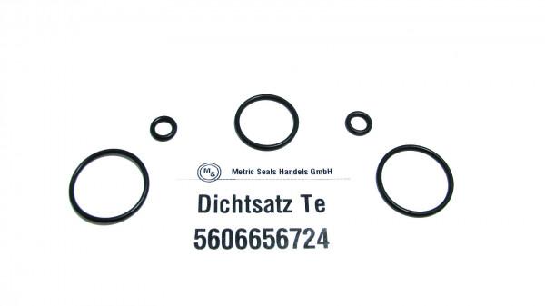Dichtsatz passend für TEREX 5606656724