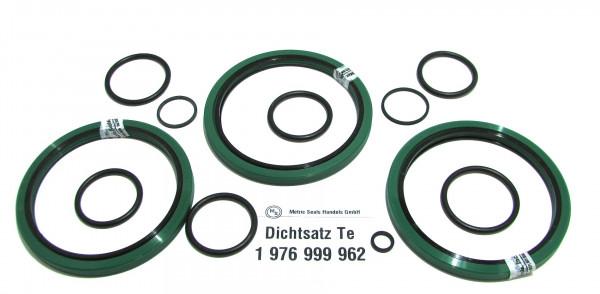 Dichtsatz passend für TEREX 1976999962