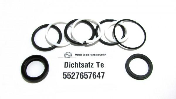 Dichtsatz passend für TEREX 5527657647