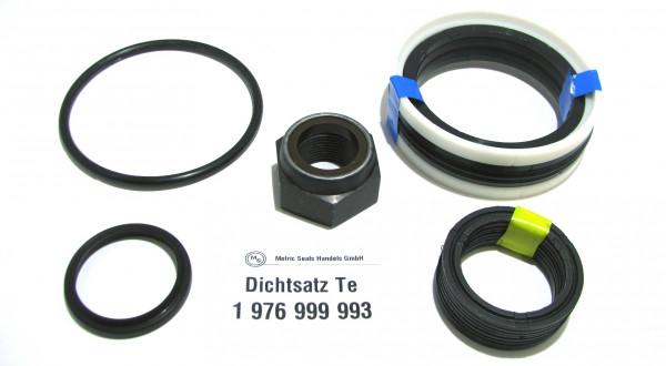Dichtsatz passend für TEREX 1976999993