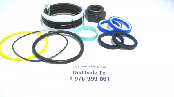 Dichtsatz passend für TEREX 1976999061