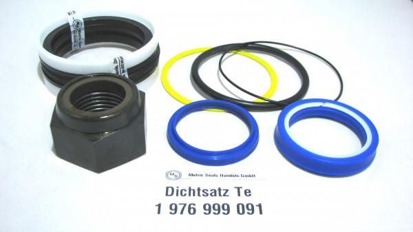 Dichtsatz passend für TEREX 1976999091