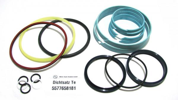 Dichtsatz passend für TEREX 5577658181