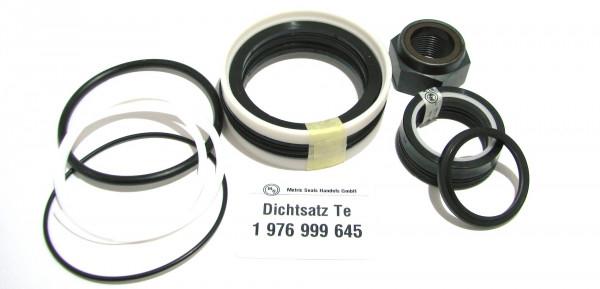 Dichtsatz passend für TEREX 1976999645