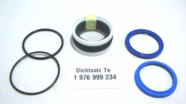 Dichtsatz passend für TEREX 1976999234