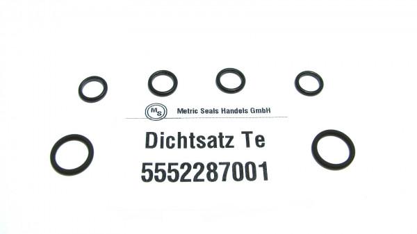 Dichtsatz passend für TEREX 5552287001
