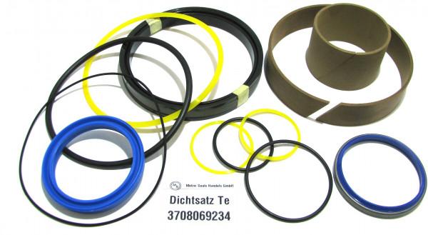 Dichtsatz passend für TEREX 3708069234