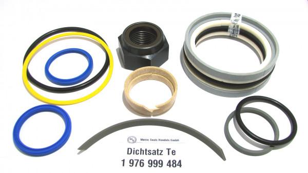 Dichtsatz passend für TEREX 1976999484