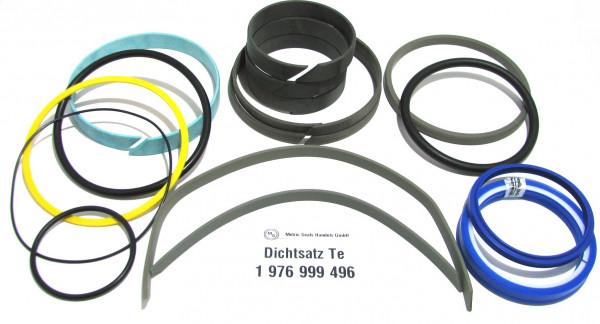 Dichtsatz passend für TEREX 1976999496