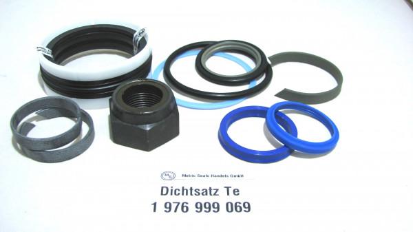 Dichtsatz passend für TEREX 1976999069
