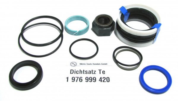 Dichtsatz passend für TEREX 1976999420