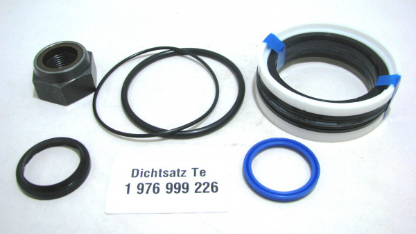 Dichtsatz passend für TEREX 1976999226