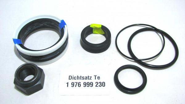 Dichtsatz passend für TEREX 1976999230