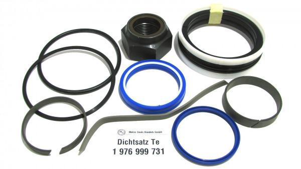 Dichtsatz passend für TEREX 1976999731