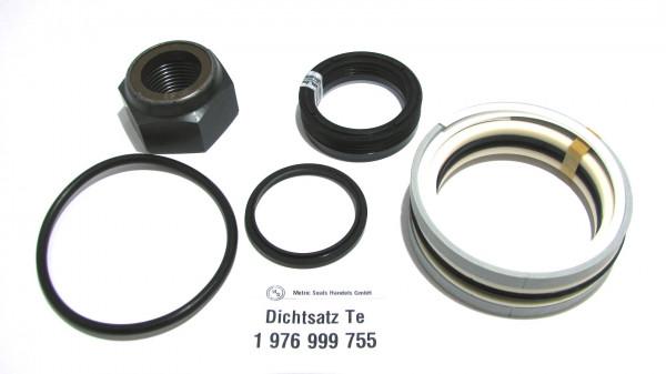 Dichtsatz passend für TEREX 1976999755