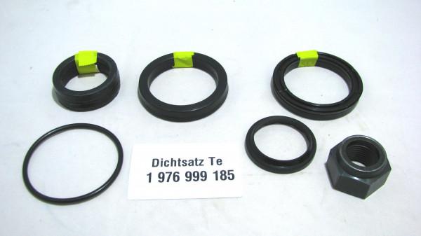 Dichtsatz passend für TEREX 1976999185
