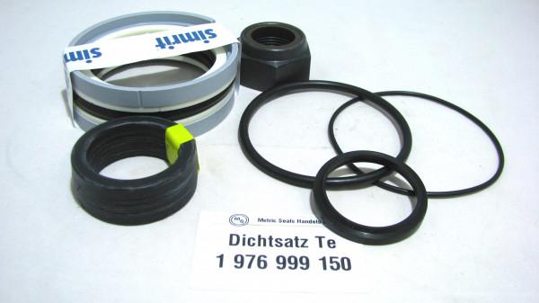 Dichtsatz passend für TEREX 1976999150
