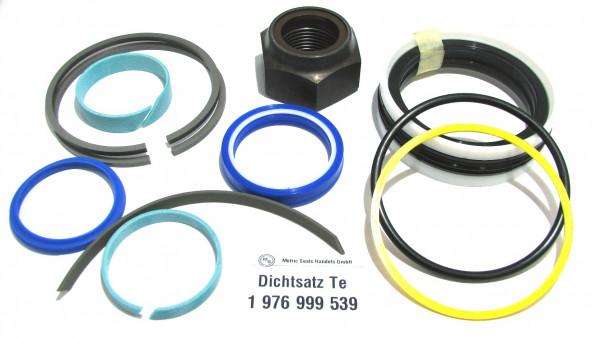 Dichtsatz passend für TEREX 1976999539