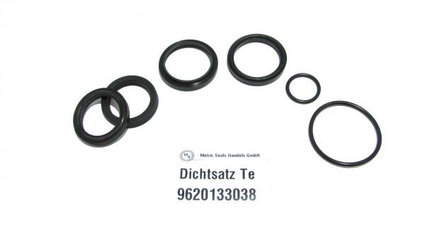 Dichtsatz passend für TEREX 9620133038