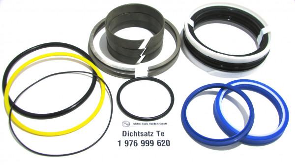 Dichtsatz passend für TEREX 1976999620
