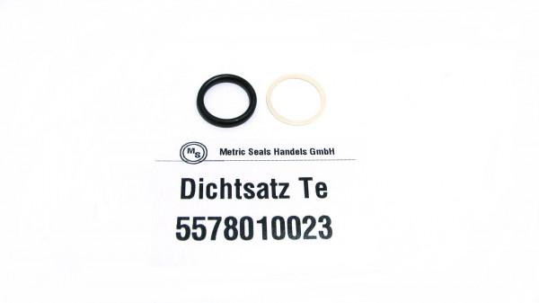 Dichtsatz passend für TEREX 5578010023