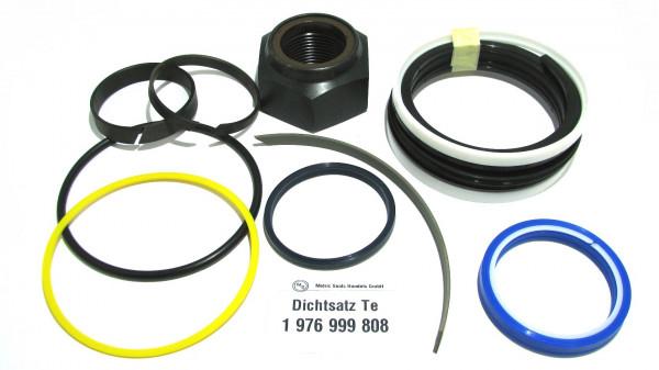 Dichtsatz passend für TEREX 1976999808
