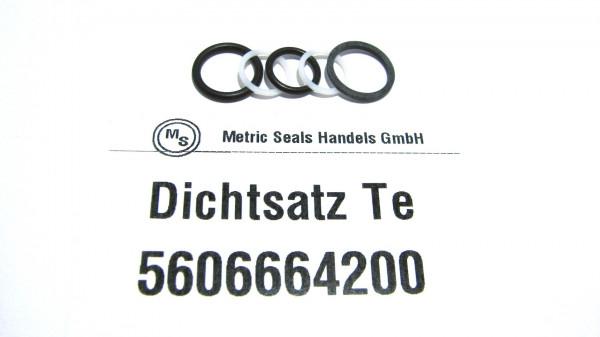 Dichtsatz passend für TEREX 5606664200