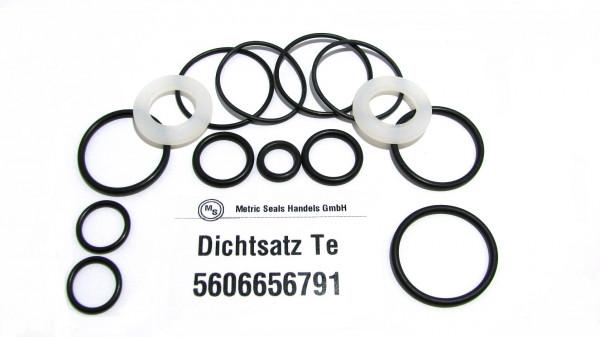 Dichtsatz passend für TEREX 5606656791